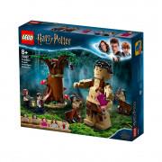 LEGO Harry Potter Zakázaný les: Stretnutie Grawpa s profesorkou Umbridgeovou (75967)
