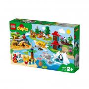 LEGO DUPLO Zvieratká sveta (10907)