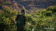 Tom Clancy's Ghost Recon Wildlands Gold Edition thumbnail